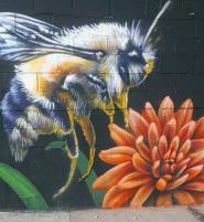 Mural by Lisa Gray